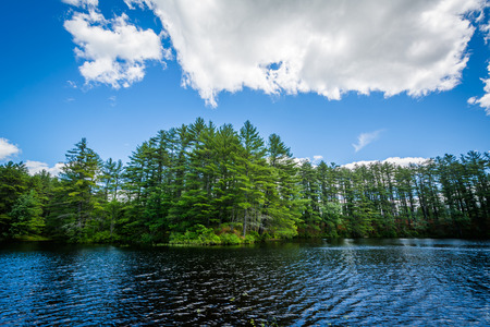 bear lake: Lake at Bear Brook State Park, New Hampshire. Stock Photo