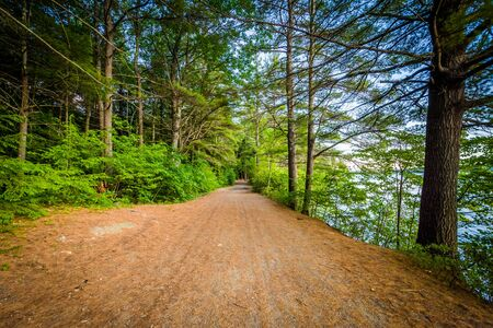 laconia: Trail along Winnisquam Lake, at Ahern State Park, in Laconia, New Hampshire.