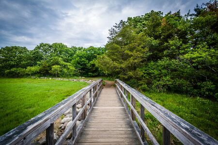 boardwalk trail: Boardwalk trail at Odiorne Point State Park, in Rye, New Hampshire. Stock Photo
