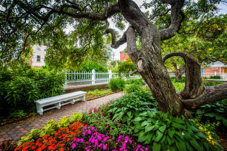 hampshire: Gardens at Prescott Park, in Portsmouth, New Hampshire. Stock Photo