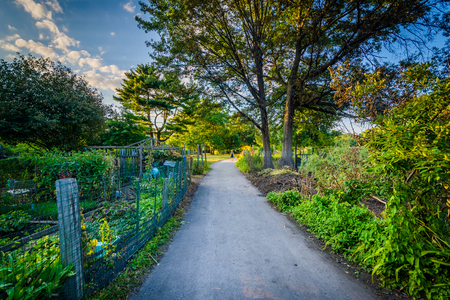 back bay: Walkway and gardens at Back Bay Fens, in Boston, Massachusetts. Stock Photo