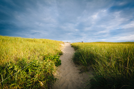 Grasses and path over sand dunes at Race Point, in the Province Lands at Cape Cod National Seashore, Massachusetts. Stock Photo