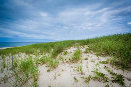 Sand dunes and grasses at Race Point, in the Province Lands at Cape Cod National Seashore, Massachusetts.