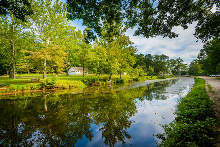 wispy: The C & O Canal, at Chesapeake & Ohio Canal National Historical Park, Maryland.