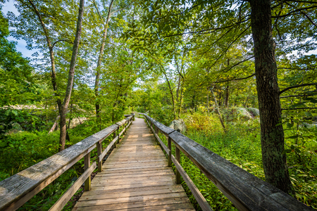 wispy: Boardwalk trail on Olmsted Island at Great Falls, Chesapeake & Ohio Canal National Historical Park, Maryland.
