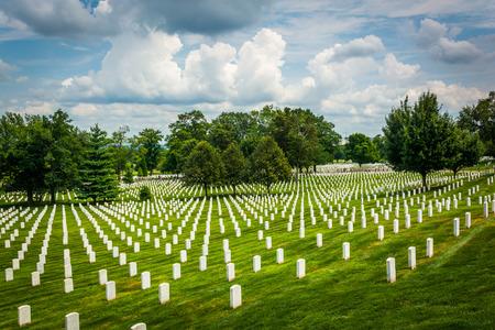 弗吉尼亚州阿灵顿国家公墓的一排排坟墓。