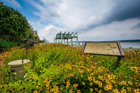alexandria: Garden along the Potomac River, in Alexandria, Virginia. Stock Photo