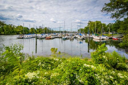 Boats at the Washington Sailing Marina, along the George Washington Memorial Parkway, in Alexandria, Virginia. Editorial