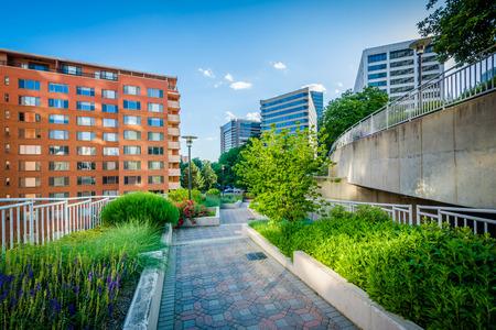 rosslyn: Gardens along a walkway at Freedom Park and modern buildings in Rosslyn, Arlington, Virginia.