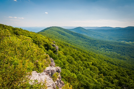 appalachian: View of the Appalachian Mountains from cliffs on Big Schloss, in George Washington National Forest, Virginia.