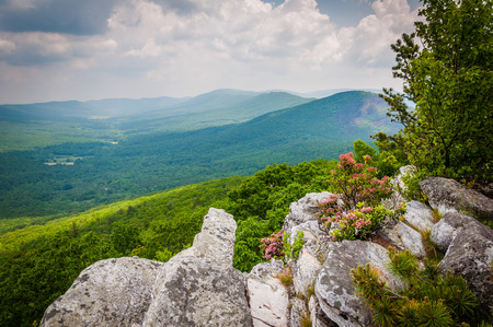 laurel mountain: View of the Ridge and Valley Appalachians from Tibbet Knob, in George Washington National Forest, Virginia.