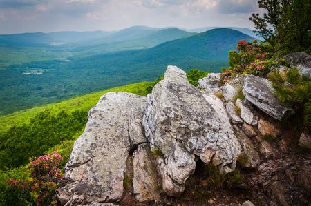 george washington: Vista de la cresta y el valle de los Apalaches Knob Tibbet, en el Parque Nacional George Washington, Virginia.