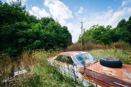 rusty car: Abandoned, rusty car in the rural Shenandoah Valley, Virginia.