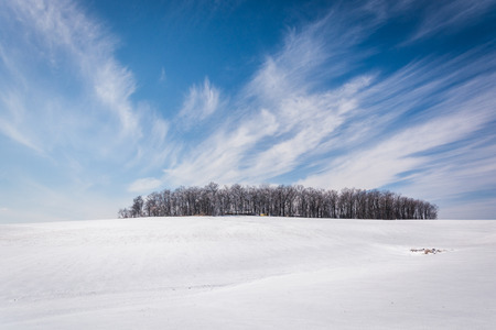 wispy: Wispy clouds over a cluster of trees and snow covered farm fields in rural Carroll County, Maryland. Stock Photo