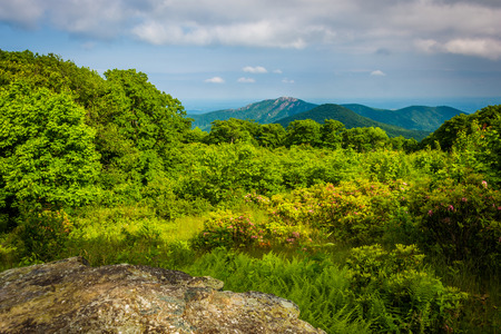 thoroughfare: View of Old Rag from Thoroughfare Overlook, on Skyline Drive in Shenandoah National Park, Virginia.