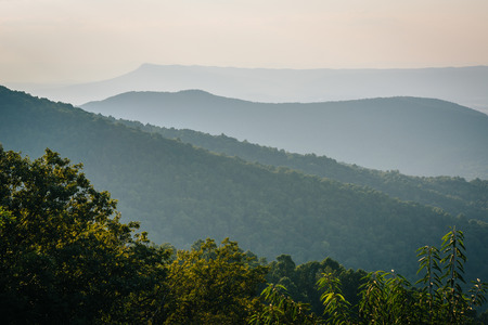 blue ridge: Layers of the Blue Ridge, seen from Skyline Drive, in Shenandoah National Park, Virginia. Stock Photo