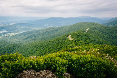 blue ridge: View of the Blue Ridge Mountains from Little Stony Man Cliffs, in Shenandoah National Park, Virginia.