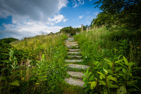 Stairs on a trail in Shenandoah National Park, Virginia. Stock Photo