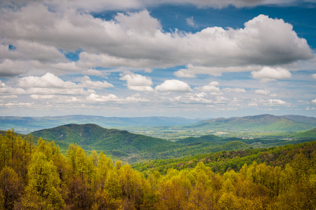 blue ridge: Spring view of the Blue Ridge Mountains and Shenandoah Valley, from Skyline Drive in Shenandoah National Park, Virginia.