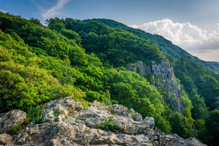 appalachian: Little Stony Man Cliffs along the Appalachian Trail, in Shenandoah National Park, Virginia.
