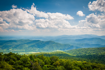 blue ridge: View of the Blue Ridge Mountains from North Marshall Mountain in Shenandoah National Park, Virginia.