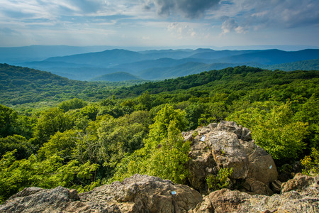 blue ridge: View of the Blue Ridge Mountains from Bearfence Mountain, in Shenandoah National Park, Virginia.
