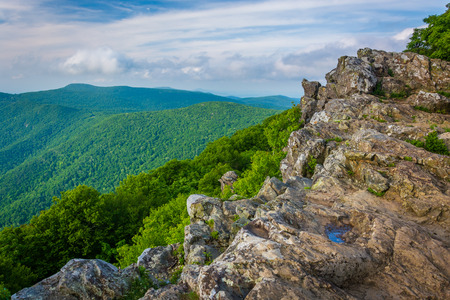 blue ridge: View of the Blue Ridge Mountains from Hawksbill Summit, in Shenandoah National Park, Virginia.
