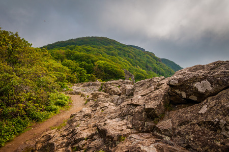 appalachian: The Appalachian Trail on Little Stony Man Cliffs, in Shenandoah National Park, Virginia.
