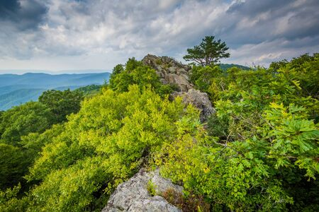 The rugged, rocky summit of Bearfence Mountain in Shenandoah National Park, Virginia.