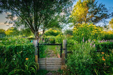 Gardens at Back Bay Fens, in Boston, Massachusetts. Stock Photo