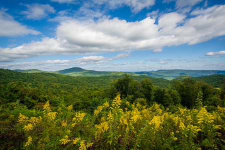 wnc: View from Highway 181, in Pisgah National Forest, North Carolina.