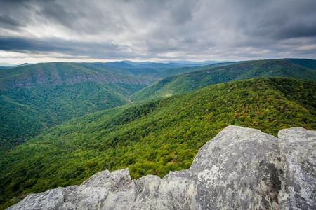 ホークスビル山、ノースカロライナ州ピスガ国有林からリンビル渓谷の眺め。