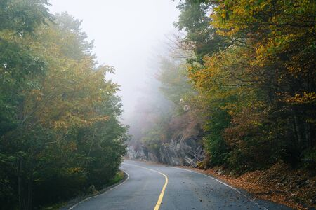 wnc: Early autumn color and fog on the road to Grandfather Mountain, North Carolina.