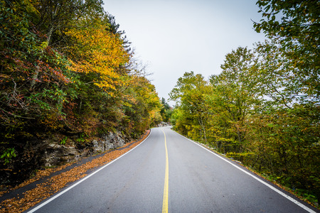 Early autumn color along the road to Grandfather Mountain, North Carolina.