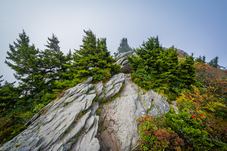 wnc: Rocky outcrop and fog, at Grandfather Mountain, North Carolina. Stock Photo