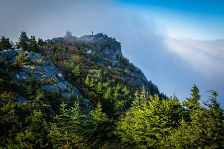 Pine trees and rocky summit, at Grandfather Mountain, North Carolina. Stock Photo