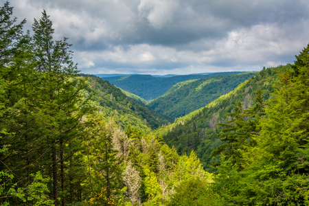 A view of the Blackwater Canyon, at Blackwater Falls State Park, West Virginia.