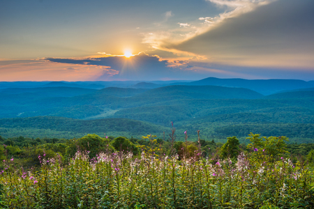 Sunset from Spruce Knob, in Monongahela National Forest, West Virginia 스톡 콘텐츠
