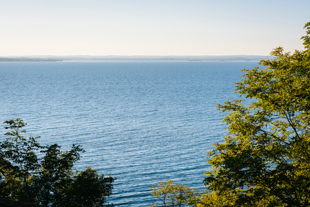 Trees and a view of the Chesapeake Bay at Elk Neck State Park, Maryland