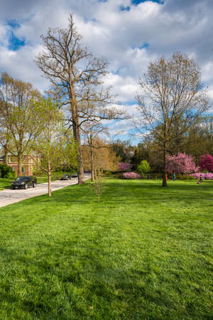 Sherwood Gardens, in Guilford, Baltimore, Maryland 免版税图像