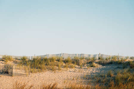 Sand dunes and fences at Fire Island National Seashore, New York
