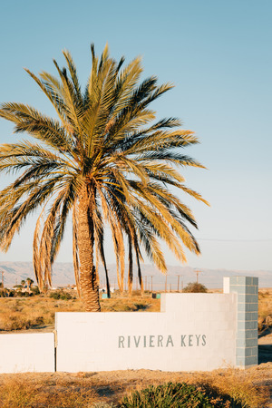 Riviera Keys sign and palm tree in the abandoned town of Salton City, California