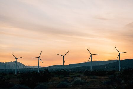 Windmills in Palm Springs, California