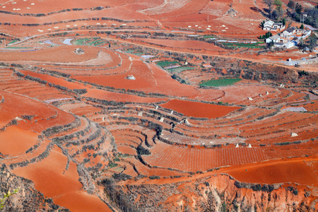 Red field in Dongchuan.
