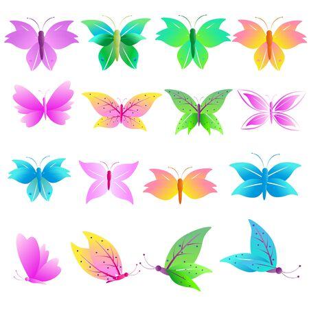 postal card: butterfly