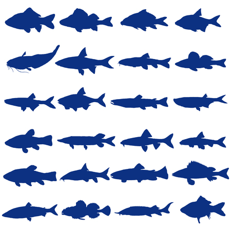 Illustration of different kinds of Fish Silhouette