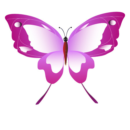 A beautiful pink butterflies,isolated on a white