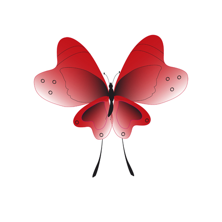 beautiful red butterflies, isolated on a white Stock Illustratie