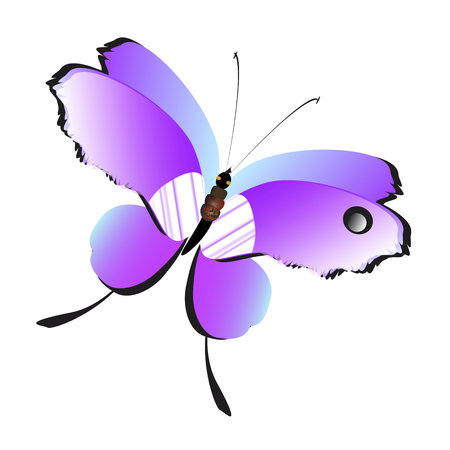 Beautiful pink butterflies,isolated on a white background. Illustration