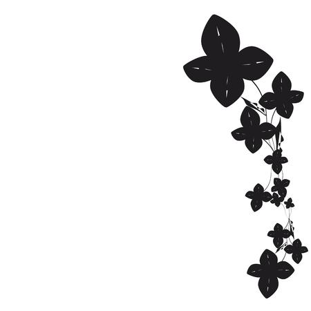 beautiful black flowers, isolated on a white Illusztráció